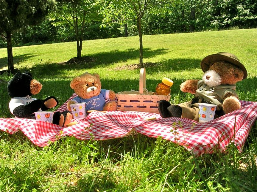 Teddy bear picnic in sunny park
